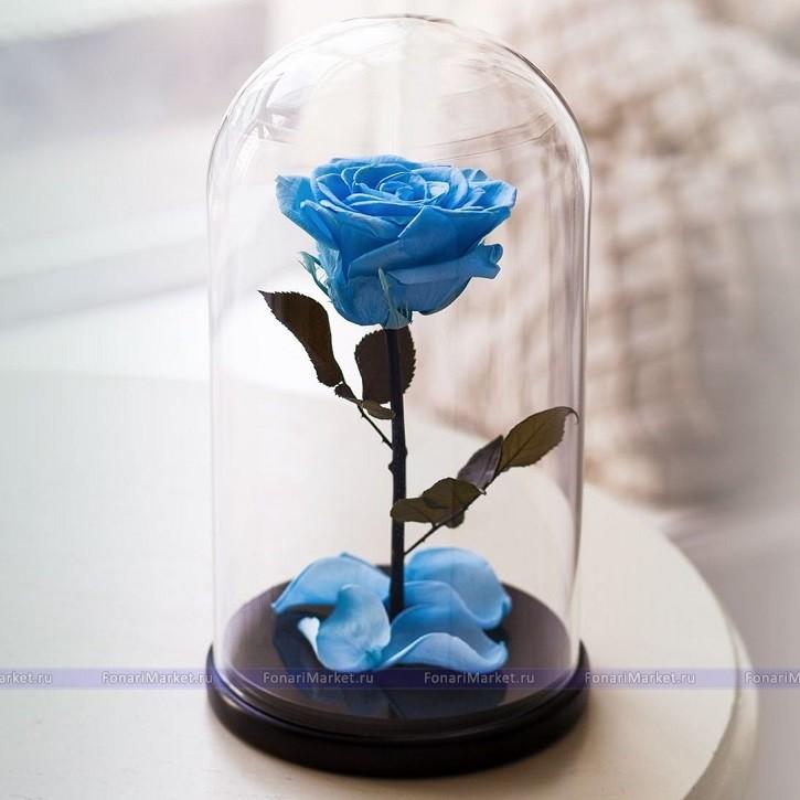 Цветок в капсуле купить в москве, цветов конфет